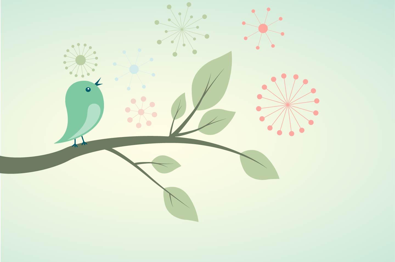 cover-bird